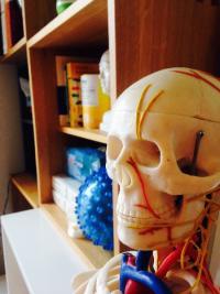 Votre ostéopathe à Paris 3 et à Paris 12 : newsletter pour le mois d'octobre